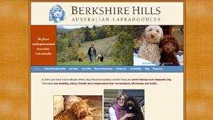 Berkshire Hills | Australian Cobberdogs